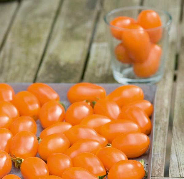 Tomaten Mirado orange Cherry