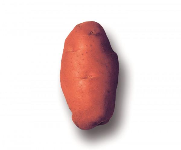 Saatkartoffeln 'Désirée', 2.5 kg