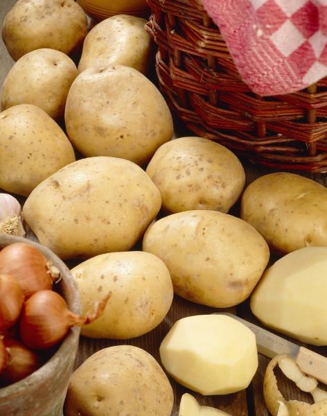 Saatkartoffeln 'Bintje', 2.5 kg