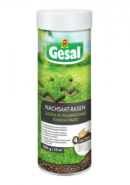 Gesal Nachsaat-Rasen 380 g