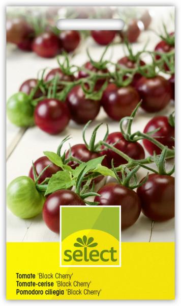 Tomate 'Black Cherry'