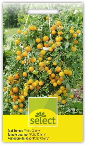 Topf-Tomate 'Patio Cherry'