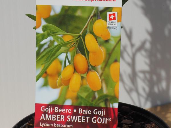 Goji-Beere Amber Sweet Goji