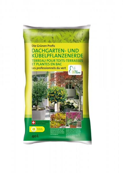 EGP Dachgarten Kübelpflanzen